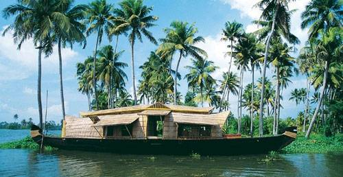 Relax in Backwater on Honeymoon
